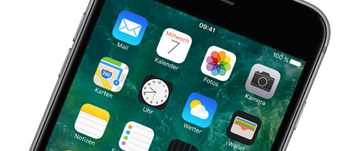 Das Display - iPhone 6s Plus