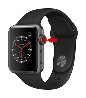 Apple Watch Cellular erkennen