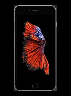 iPhone 6s Plus Spacegrau (32 GB)