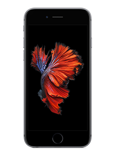 iPhone 6s Spacegrau (32 GB)